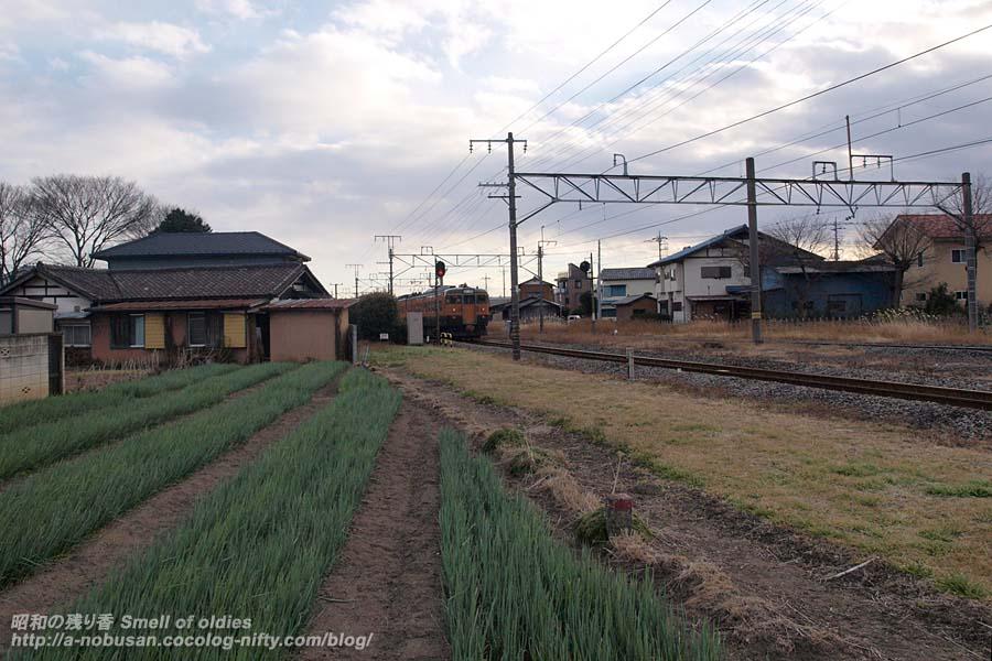 P1116646_senroato