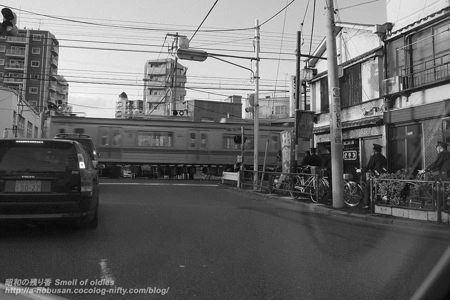 P1127116_crossing
