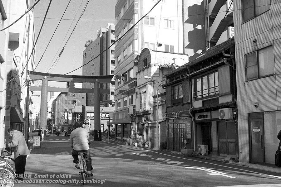 P1147300_torii