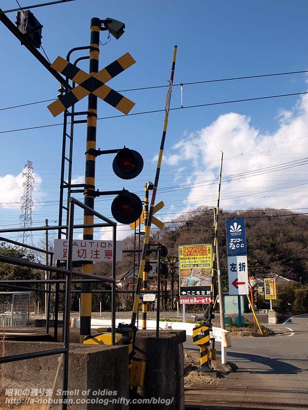 P1178195_crossing