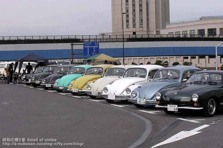 P3300049_beetles
