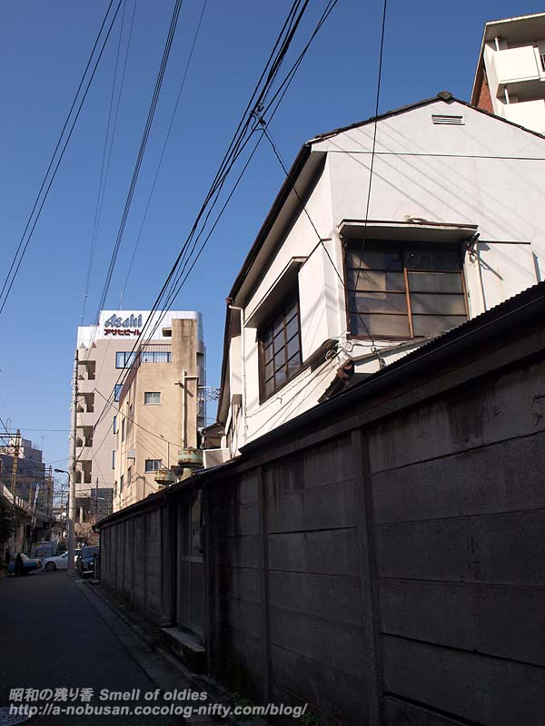 P3054179_asahi