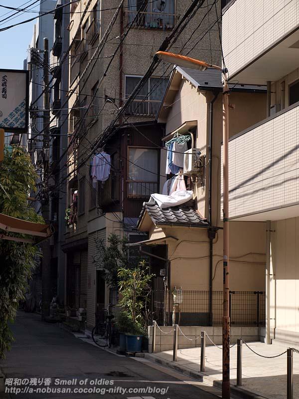 P3054236_futonhoshi