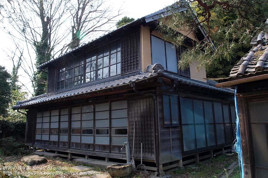P3216529_shimizu_meidi