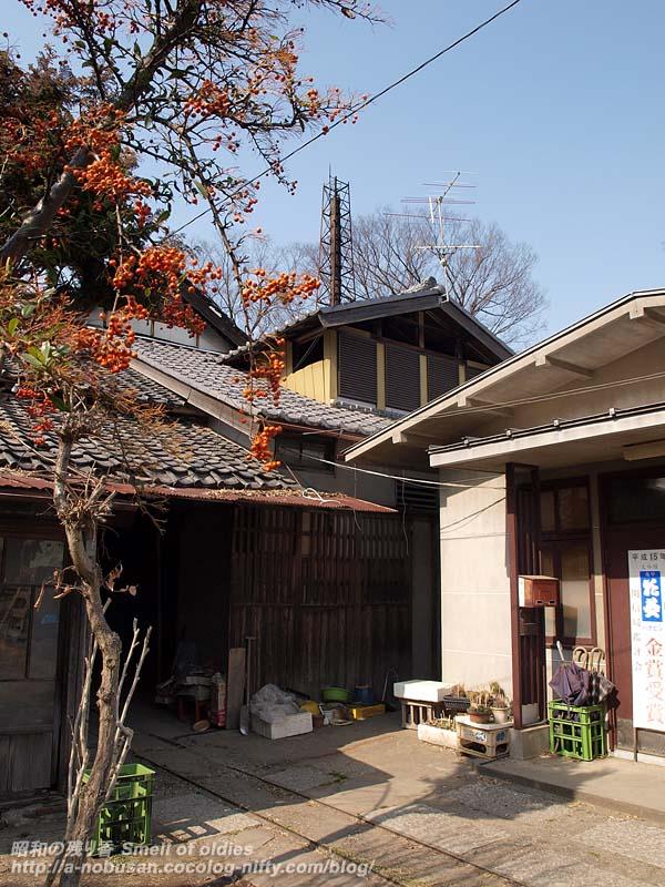 P3216542_shimizusyuzo