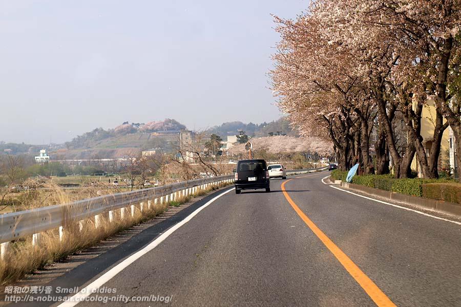P4120032_siroyamao