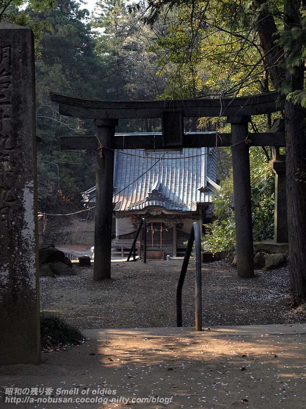 P4120052_torii