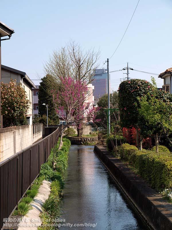 P4110494_furogawa