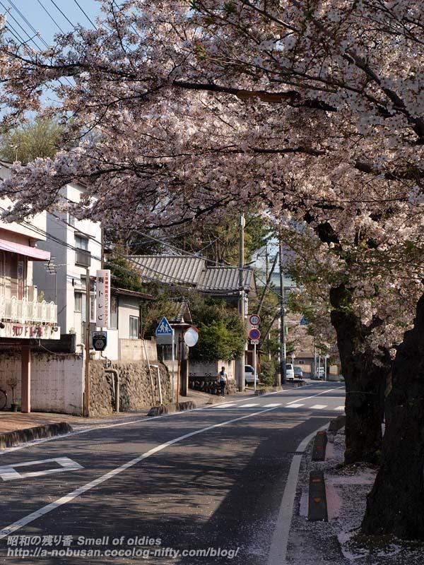 P4110508_fujikikai