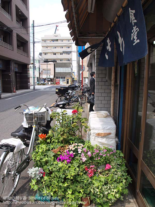 P4160698_tokiwa