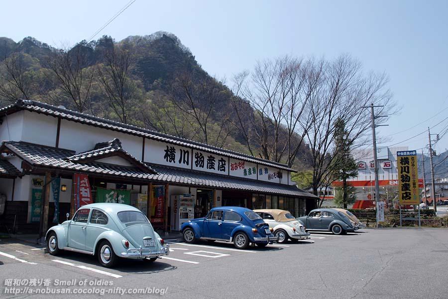 P4190101_yokokawa_6bugs