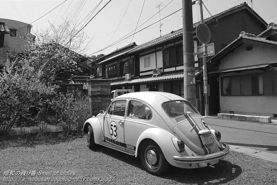 P4060851_katata