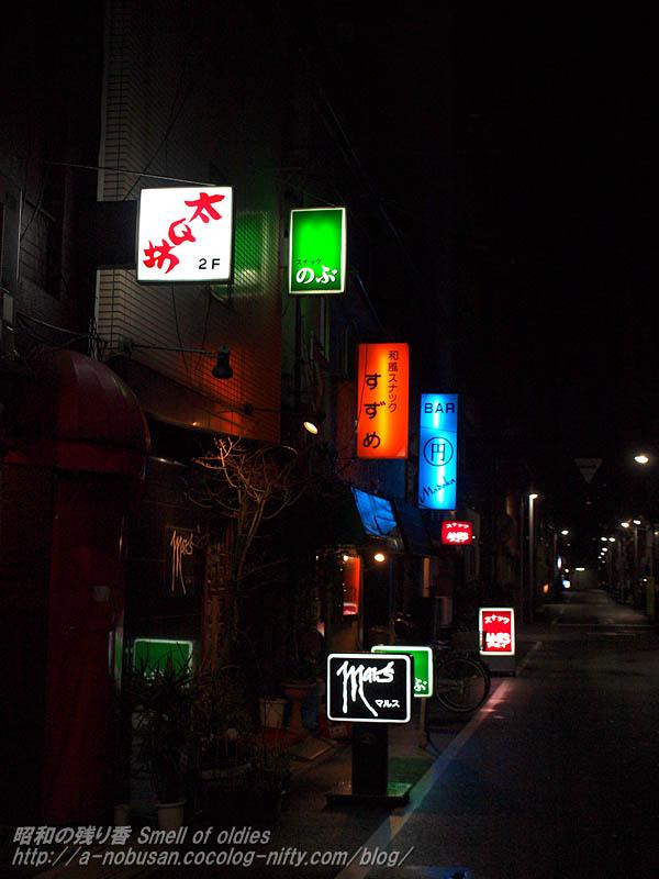 P3257595_neon