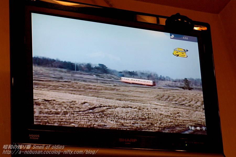 P4080076_tsugarukana