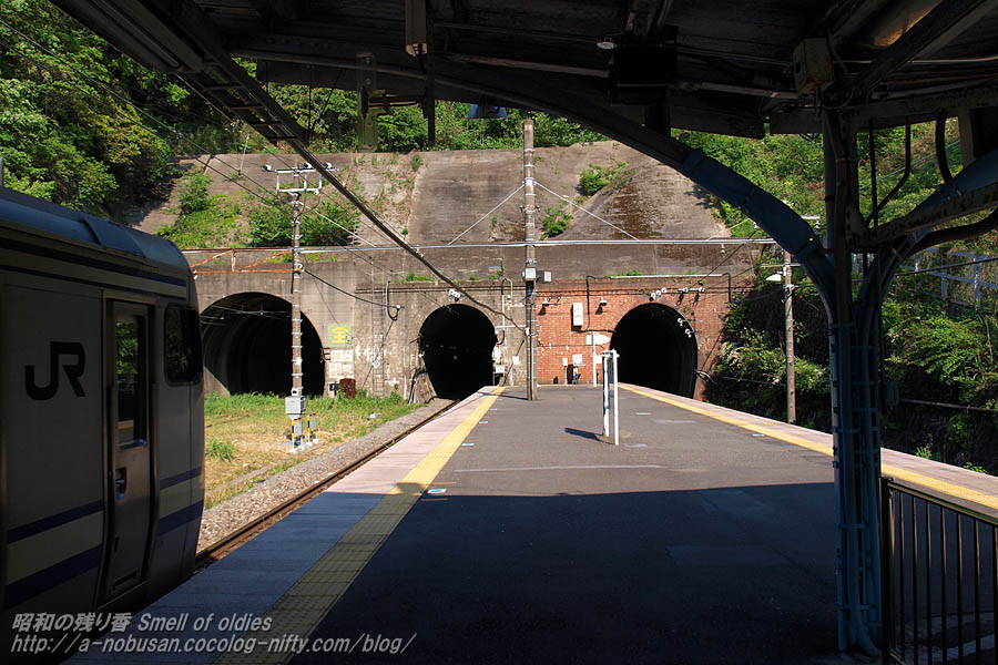 P4290280_tunnel