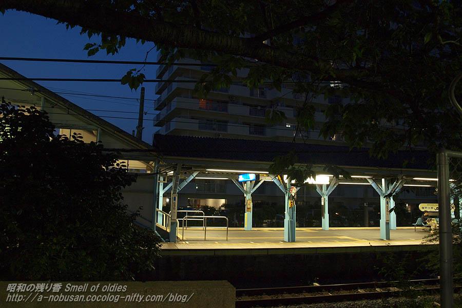P4290787_yorunotauraeki
