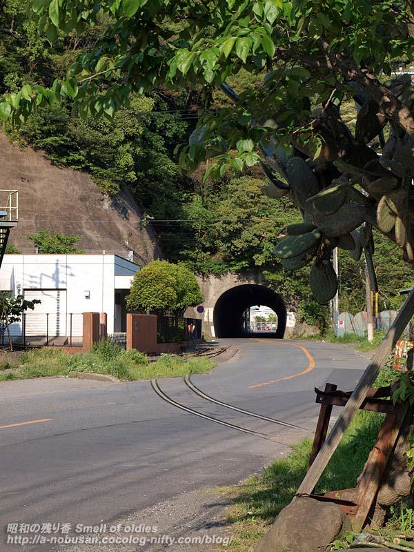 P4290487_tunnel