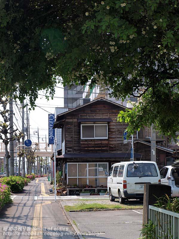 P5090024_tatamiya