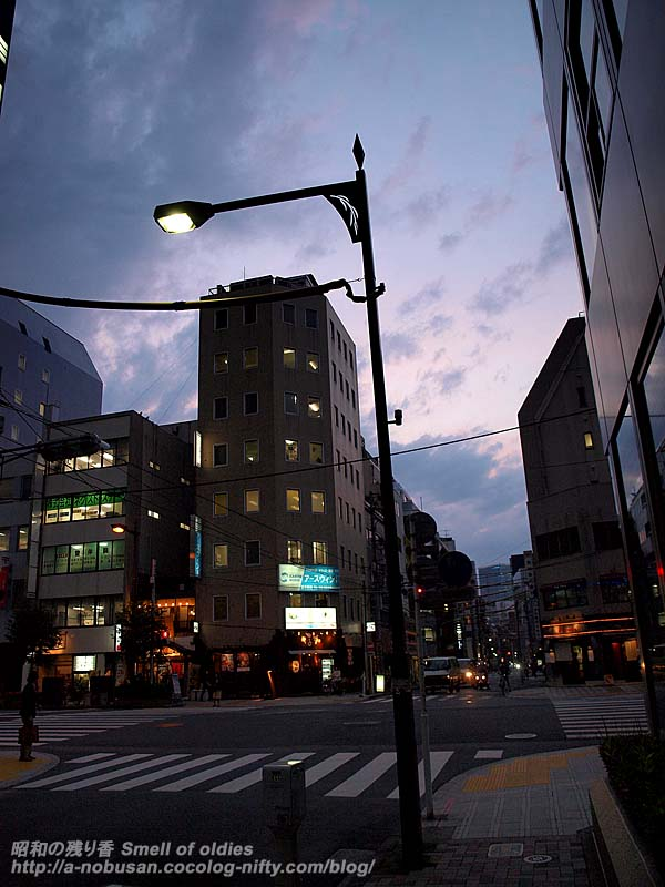 P5130050_streetlamp