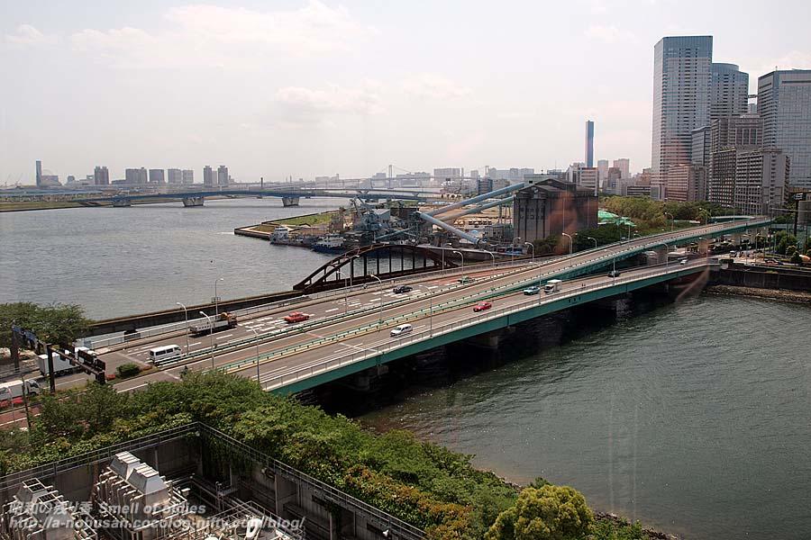 P5140015_bridge