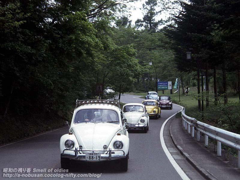 0527_45_1967bugs
