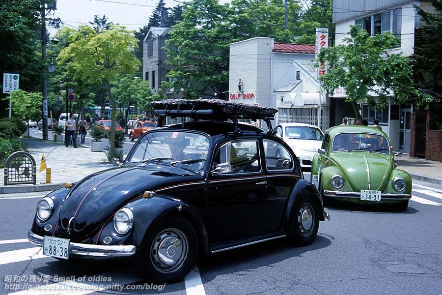 20030525_fm_03_06_blackbug