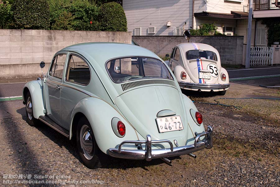 P5230147_1965and1969beetle