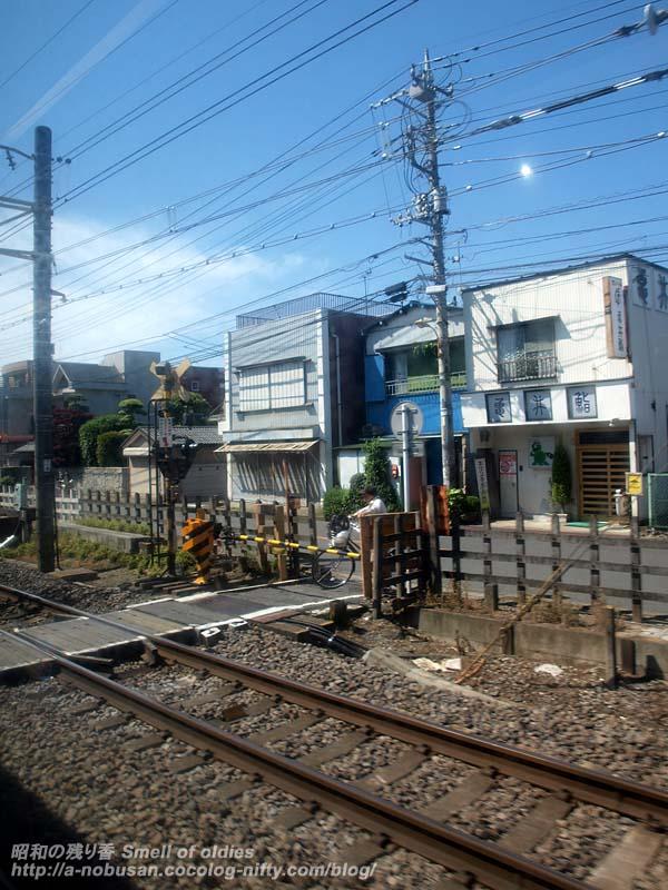 P5180159_crossing