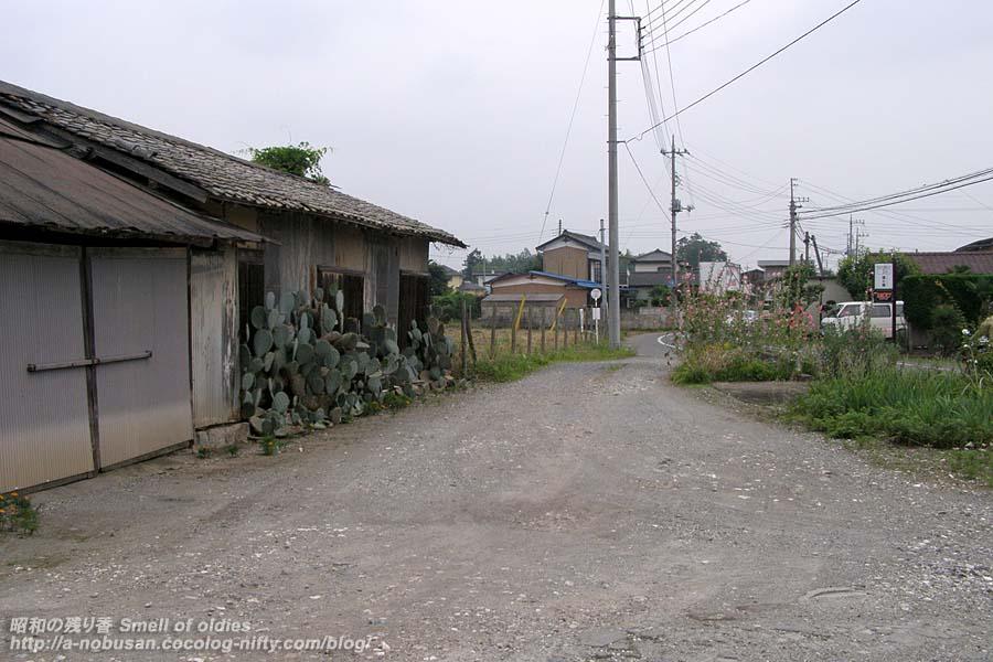 P6280074_kamotsu_home