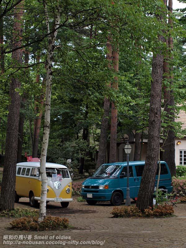 P7190028_forest_vans