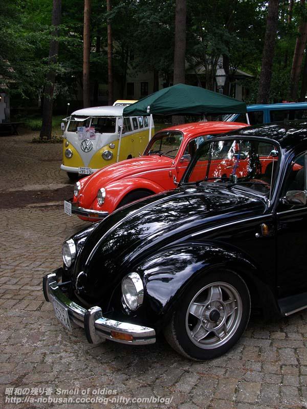 P7190310_beetle_kounensiki