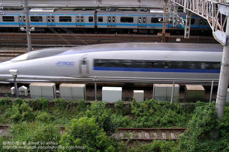 P7280043_local_rail