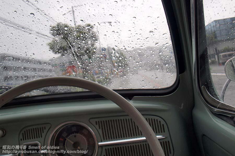 P8010232_rain