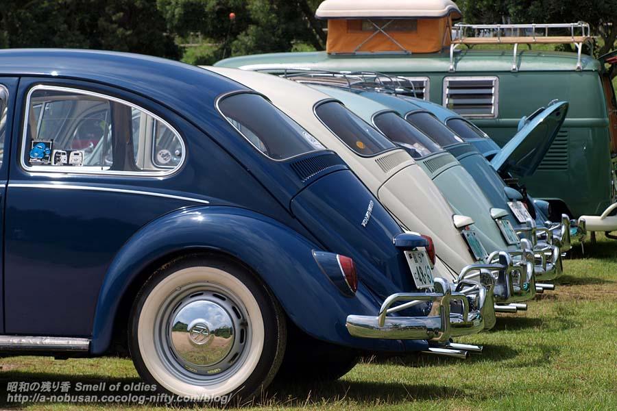 P8020670_bugs_rear
