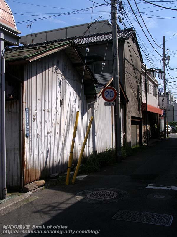 P8150168_hashimoto