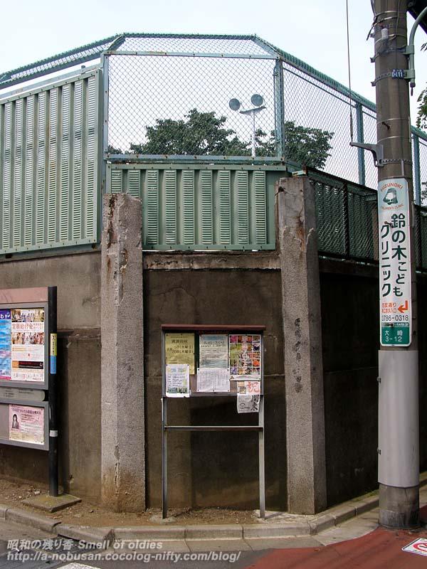 P8190216_shogakkou