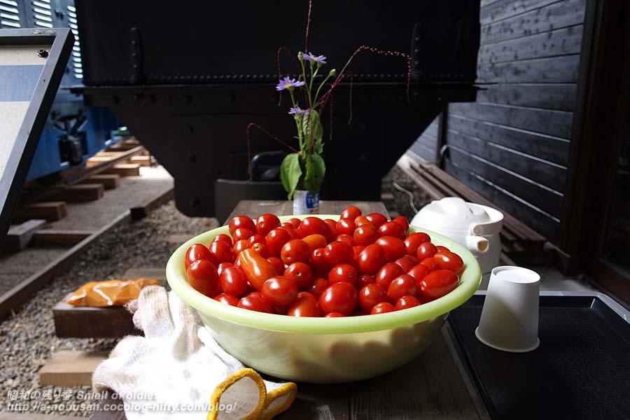 P8220221_petit_tomato