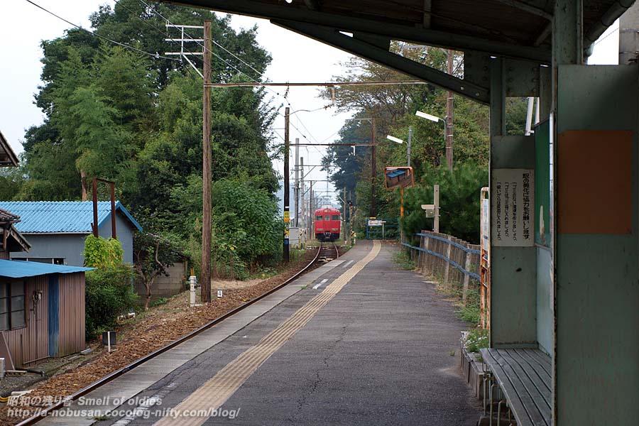 P8301633_train
