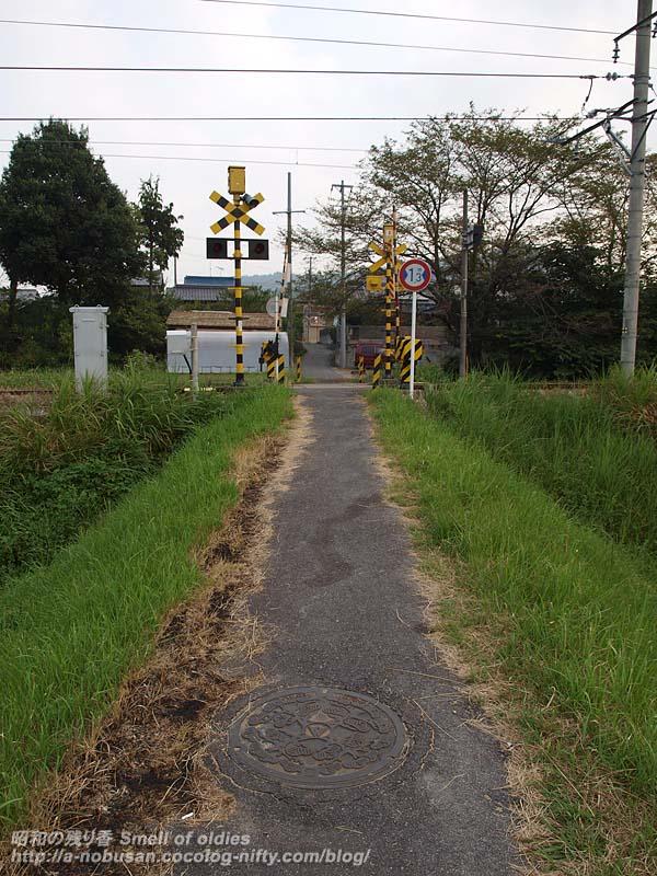 P8301658_crossing