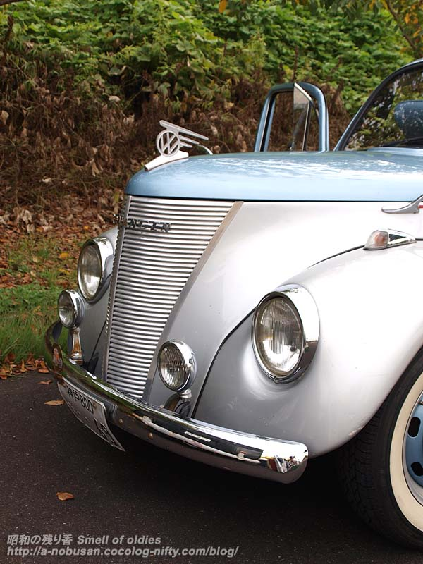 P8301684_vw_ford_bug