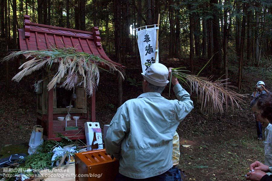 P9134545_houno_susuki