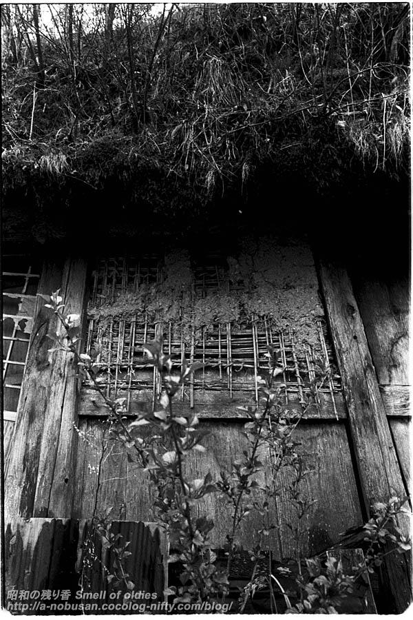 198005_01_33u2_haioku
