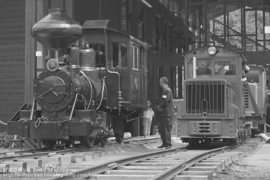 Pa047494_two_locomotive