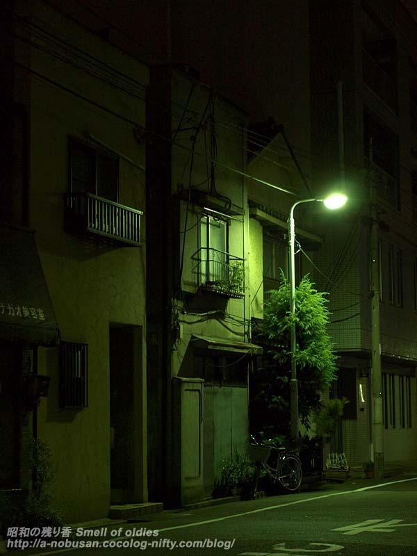 Pa016351_yoru_no_gaito