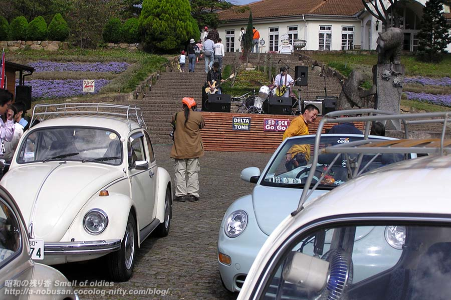 Pa150034_the_wagen_beetles