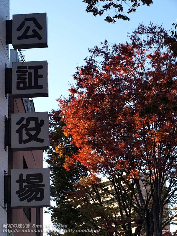 Pb034370_kousyouyakuba
