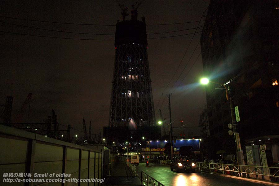 Pb116622_tokyo_night_tree