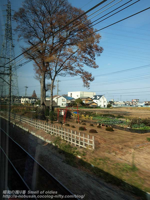 Pb291687_torii