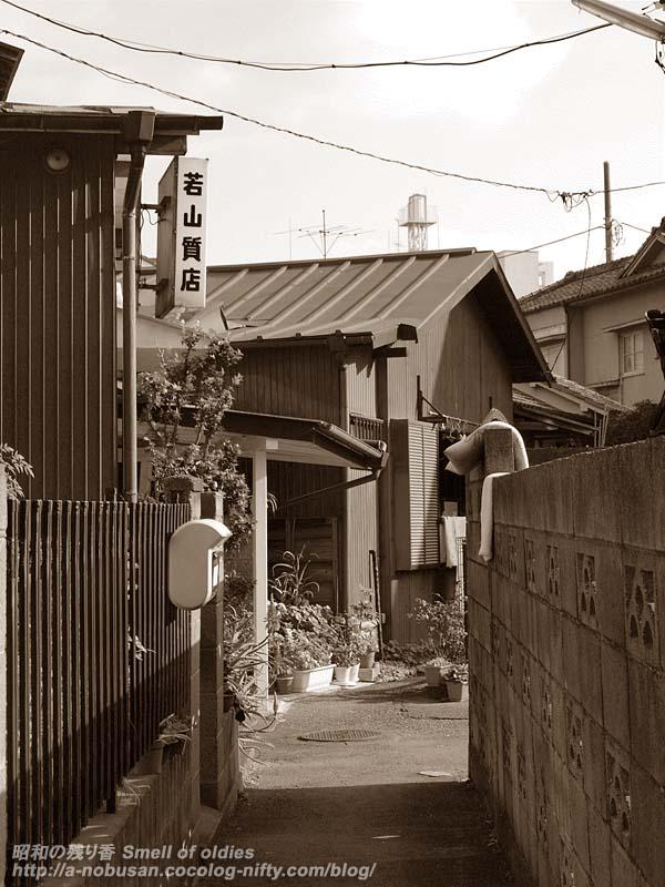 Pb291876_shichiten