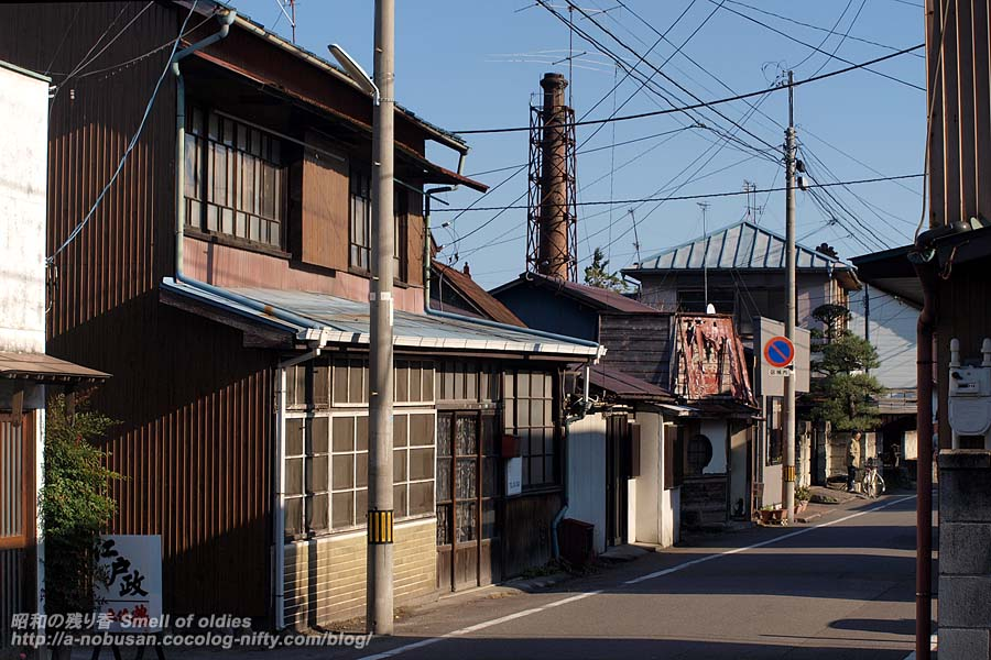Pc063446_cocomo_syuzoka